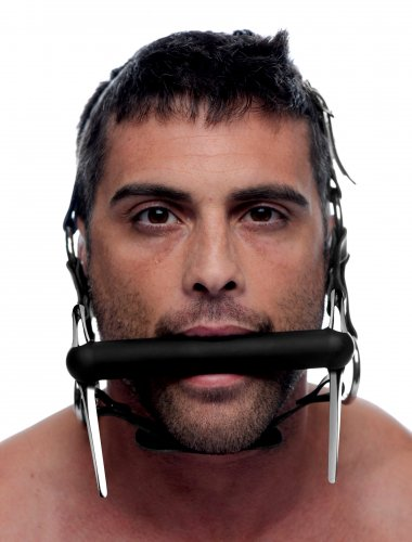 Silicone Bit and Bridle Head Harness With Model